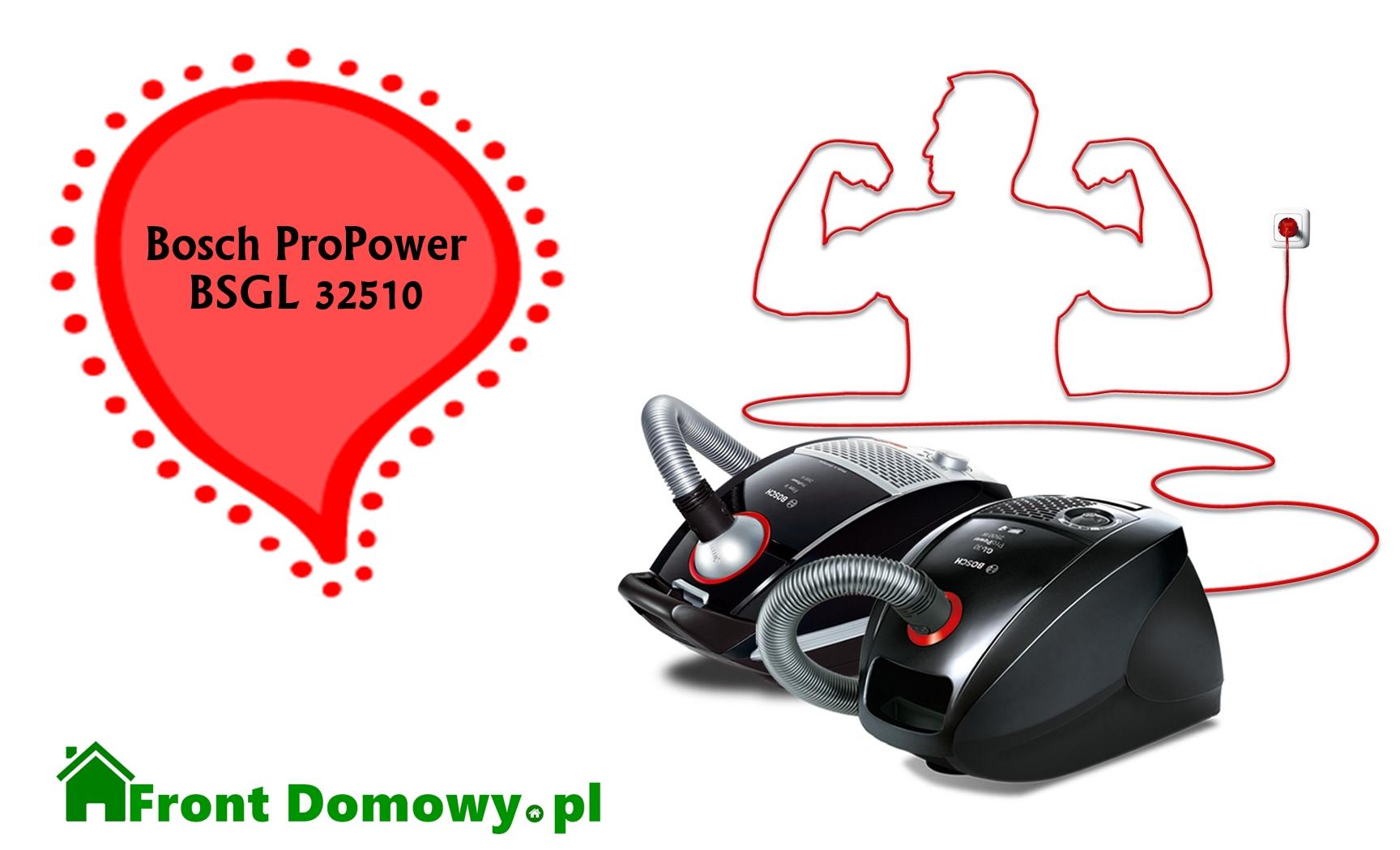 Bosch ProPower BSGL 32510