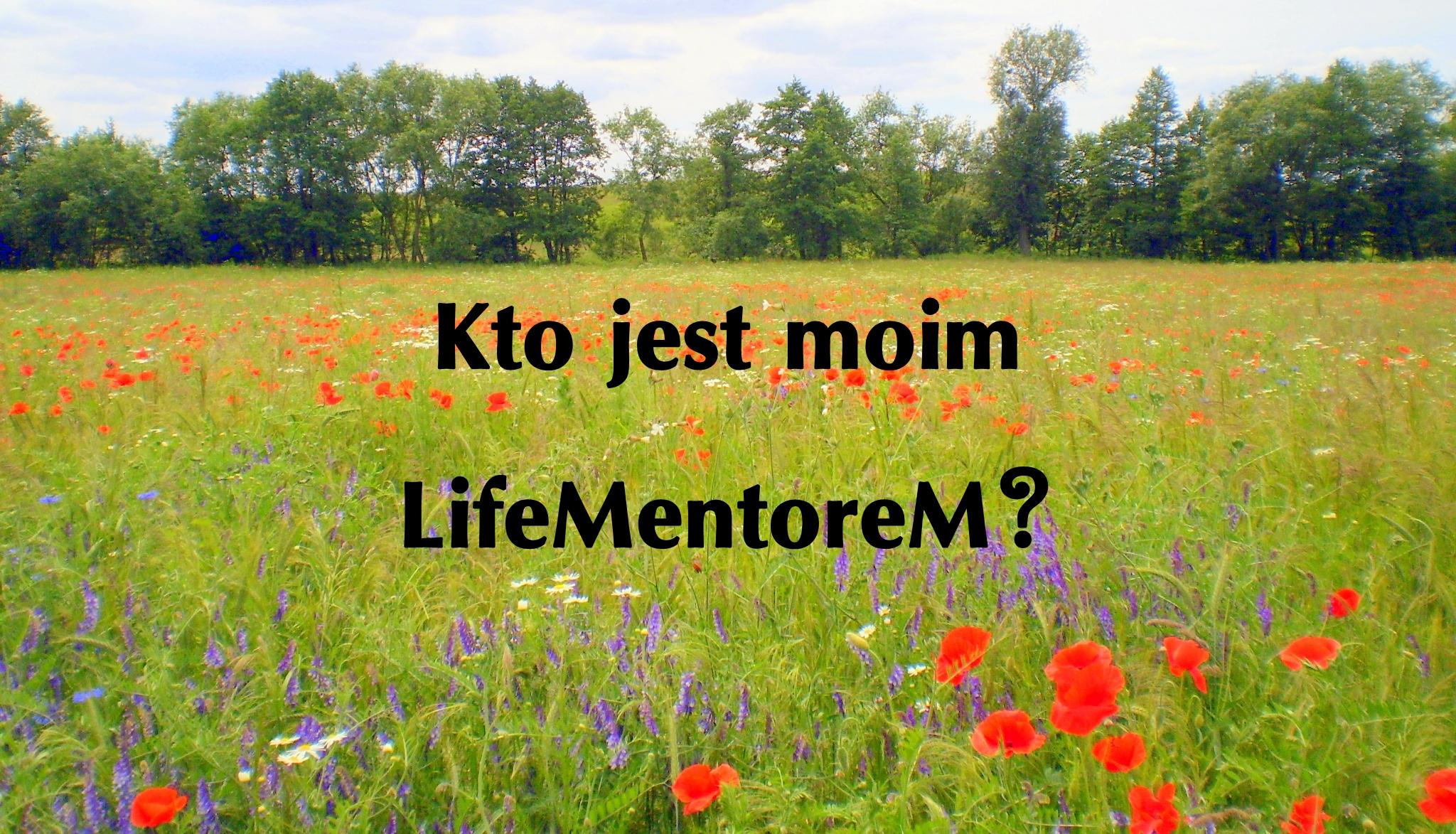 Kto jest lifementorem