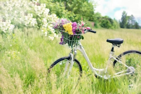 3 powody, dla których kocham wiosnę