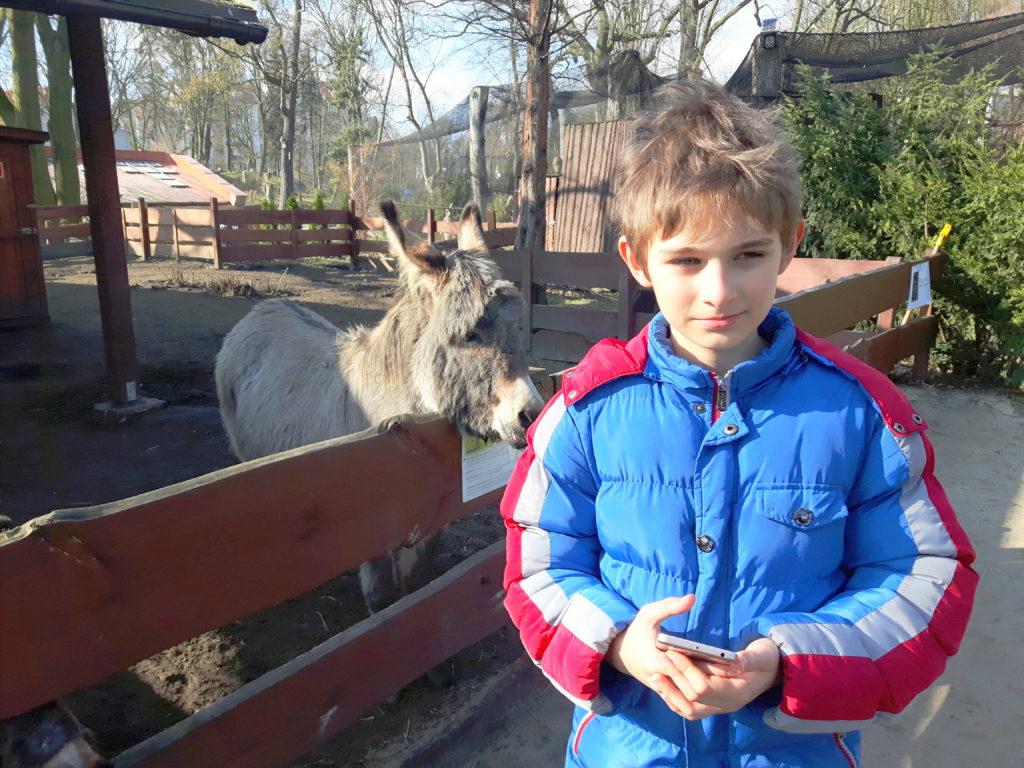 zoo w toruniu