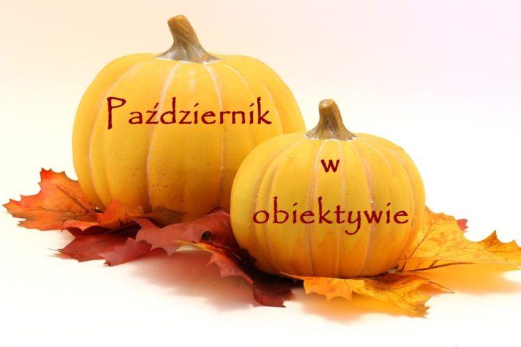 październik w obiektywie