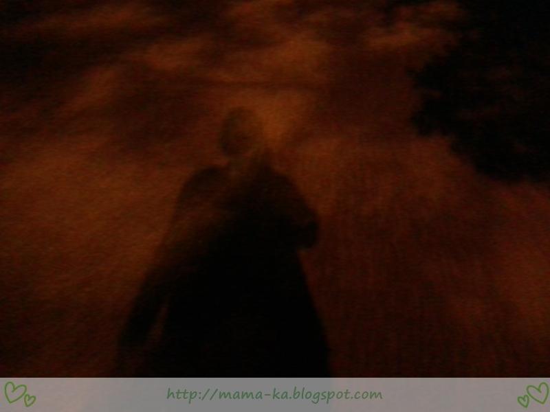 Nocne wyprawy