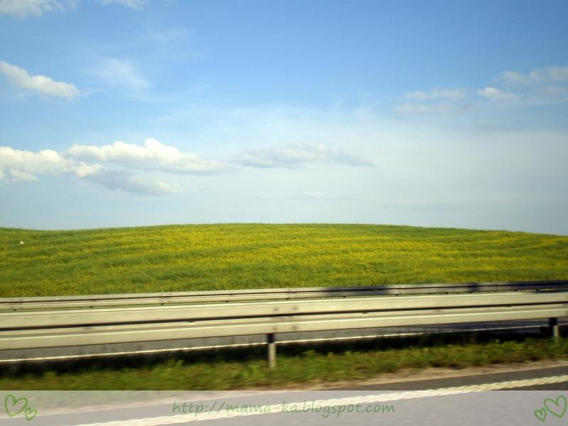 W drodze nad morze...