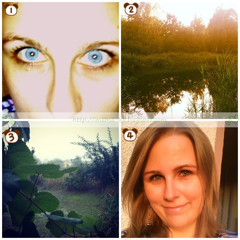1. Behind blue eyes / 2. Znalezione w lesie 3. Widok z okna / 4. Weekendowo