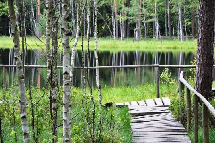 sinice jezioro